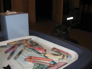Ippie, cat, crayons, coloring, coloring book